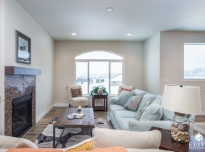 The Susitna (right unit)- Living Room