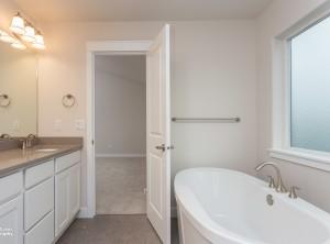 The Alpine- Master Bathroom
