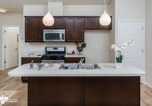 Irontree Triplex- Kitchen