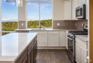Timber II Kitchen